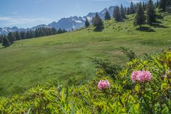 Mountainous of belledone,isere,france Royalty Free Stock Image