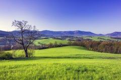 Mountainous country Czech Republic. View for spring mountainous landscape Czech Republic Stock Image
