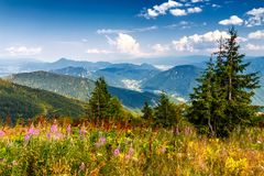 Mountainous country with valleys in northern Slovakia. Mountainous country with valleys in northern Slovakia, blossoming meadow in the foreground, Europe stock images