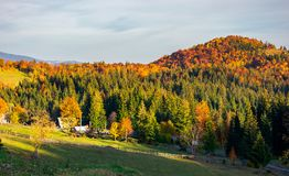 Mountainous countryside in autumn. Village near the forest in evening royalty free stock images