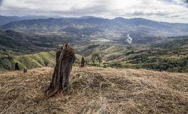 Mountainous deforested landscape in vietnam stock photography
