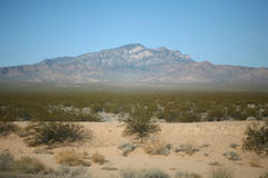 Mountainous desert landscape. Photo of a mountainous desert landscape taken in Nevada near the California boarder. Desert plants, sand and blue sky can be seen Royalty Free Stock Images