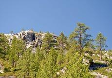 Mountainous forest landscape Stock Photo