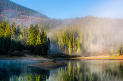 Mountainous lake in foggy forest Stock Image
