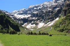Mountainous Landforms, Grassland, Mountain Range, Mountain royalty free stock photo