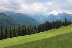 Mountainous Landforms, Grassland, Nature, Mountain Range stock photos