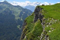 Mountainous Landforms, Mountain, Nature, Mountain Range