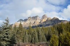 Mountainous Landforms, Mountain, Wilderness, Tree Stock Photo