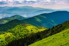 Mountainous landscape with forested hills. Beautiful summer scenery on a cloudy day Royalty Free Stock Images