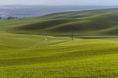 Mountainous landscape of green grass during spring Stock Photos
