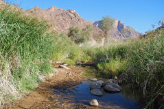 Mountainous landscape with river grass - Namibia Stock Photo