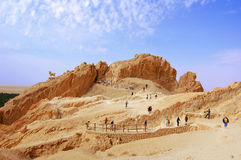 Mountainous oasis in Sahara, Chebika. Mountainous oasis in Tunisia. Sahara, Chebika Stock Photos