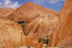 Mountainous oasis in Tunisia. Sahara, Chebika Royalty Free Stock Photos