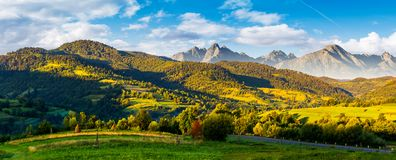 Mountainous panorama of countryside at sunrise. In summer. grassy fields in morning light. composite image with ridge of High Tatra rocky peaks in the distance Stock Photography