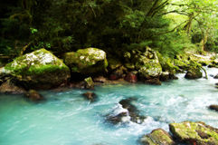 Mountainous river Royalty Free Stock Photography