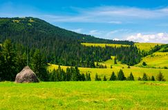 Mountainous rural area on a bright summer day. Rolling hills with haystacks and spruce forest. mountain ridge in the far distance Royalty Free Stock Photography