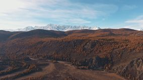 Mountainous snow-capped peaks in distance on horizon, yellowed trees. Natural landscape: mountainous terrain, mountainous snow-capped peaks in the distance on stock video