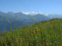 The mountainous of Svaneti. Georgia Stock Images