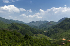 Mountainous tropical landscape Stock Photos