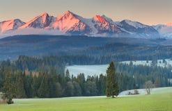 Mountainpeaks di Snowy nel sunligh rosso Immagini Stock
