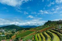 Mountains& x22 ландшафта; dao& x22 ing понедельника; Область Чиангмая гребень в районе деревни Hmong Стоковая Фотография