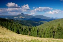 Mountains. Ukraine, mountains are Carpathians, summer Royalty Free Stock Photo