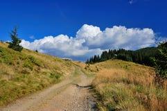 Mountains. Are Carpathians, Marmarosskiy array, Ukraine. Summer stock images