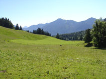 Mountains. A day in the bavarian mountains, Hirschberg Royalty Free Stock Image