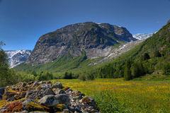 In the mountains. Of Norway Royalty Free Stock Photo