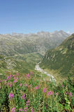 Mountains. Landscape with swiss rocky mountains Stock Image