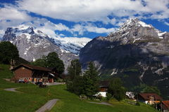 Mountains Above Swiss Grindelwald Royalty Free Stock Images