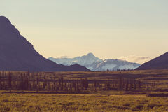 Mountains in Alaska Stock Images
