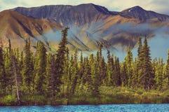 Mountains in Alaska Royalty Free Stock Image