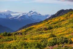 Mountains on Alaska stock photo