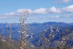 Mountains. Royalty Free Stock Photos