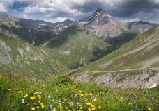 Mountains  in the Alps with flowers and clouds at Fimba pass Royalty Free Stock Photos