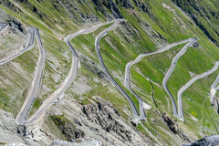 Mountains Alps Passo Stelvio Royalty Free Stock Photo