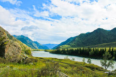 Mountains. The Altai mountains, the Katun river, a picturesque place Stock Image