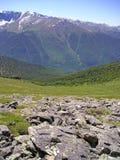 Mountains Altai Royalty Free Stock Photo