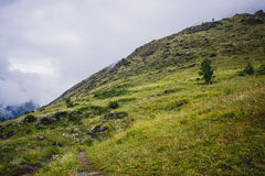 Mountains of Altay Stock Photos
