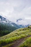 Mountains of Altay Royalty Free Stock Images