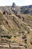 Mountains in the forest of Anaga. Mountains in the of Anaga on the island of Tenerife, Canary Islands Spain. It´s a vertical picture Royalty Free Stock Images