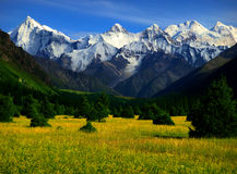 Mountains And Pasture Stock Image