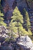 Mountains of Arizona Stock Photo