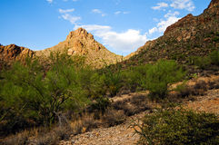 Mountains Arizona Royalty Free Stock Photography