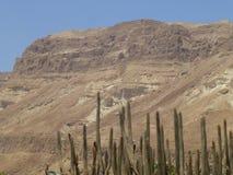 Mountains around Kibbutz Ein Gedi in Israel stock photos