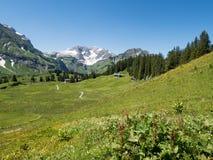 Mountains around the village Schroecken Stock Images