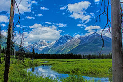 Mountains As Seen From Camas Creek Royalty Free Stock Photography