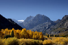 Mountains and Aspens Royalty Free Stock Photos