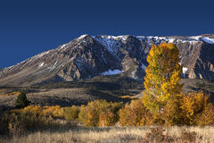 Mountains and Aspens Stock Photo